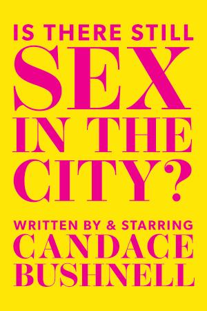 Is There Still Sex in the City? Poster